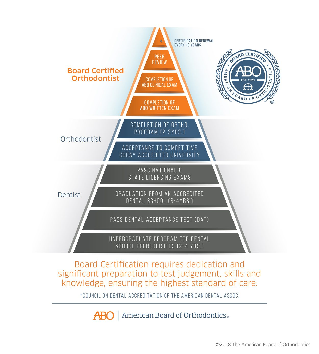 American Board of Orthodontics Infographic